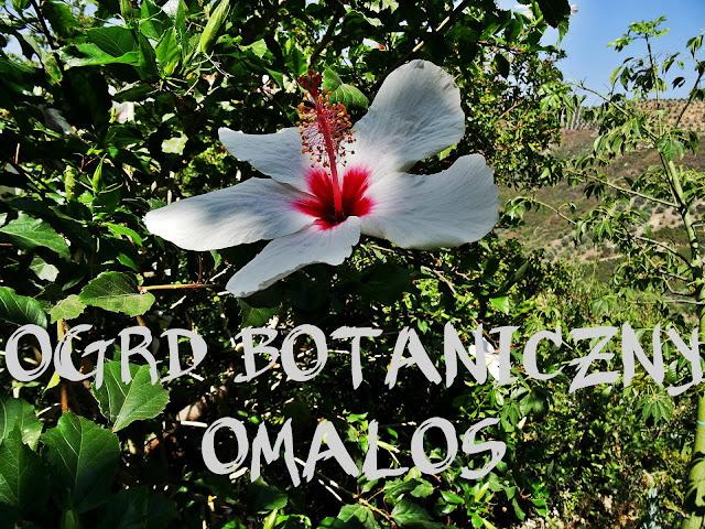 ogród botaniczny Omalos okolice wąwozu Samaria
