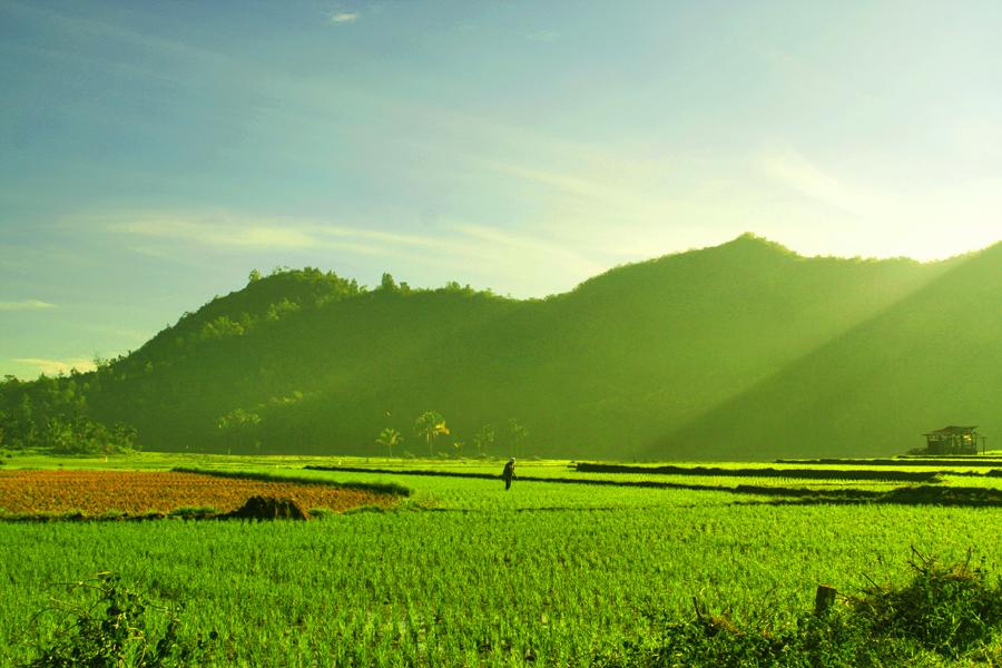 Gambar Pemandangan Alam di Desa yang Indah Kumpulan Gambar ...