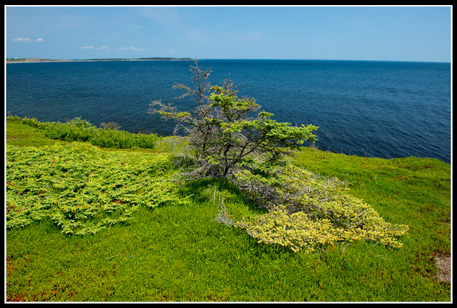 Nova Scotia; Gaff Point; Ocean; Atlantic; Cliffs