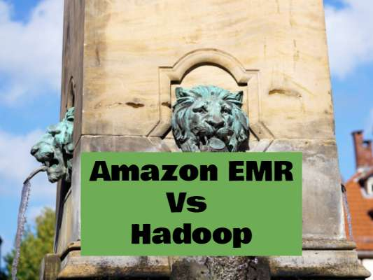 With Amazon Elastic MapReduce (Amazon EMR) you can analyze and process vast amounts of data.
