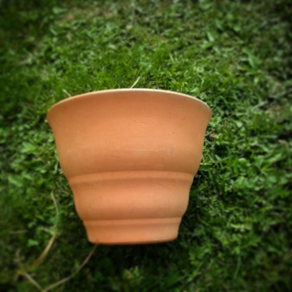 Arabia s stora kaffeburk som slunkit genom kunskapsnätet . d316a7b97b4d4