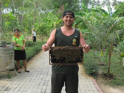 Giới thiệu mật ong nguyên chất Highland Bee