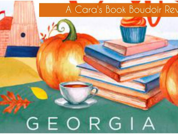 The Little Book Cafe: Amy's Story by Georgia Hill Review