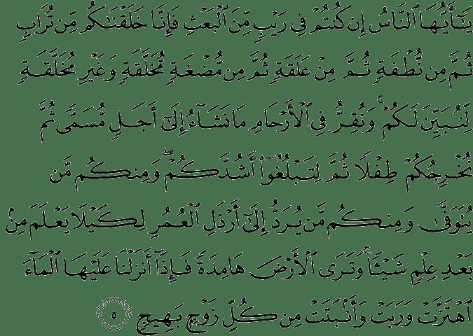 Surat Al Hajj ayat 5