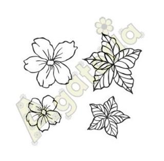 https://sklep.agateria.pl/en/flowers/1101-kwiaty-jabloni-5902557827107.html