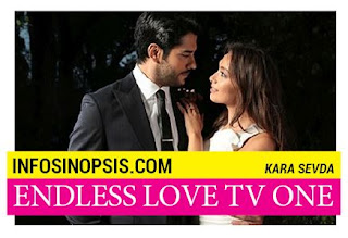 Sinopsis Endless Love TV One