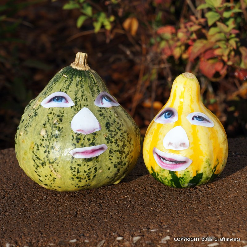Craftiments:  Look Mom, I'm a Gourd!  Kids' Decoupage Craft