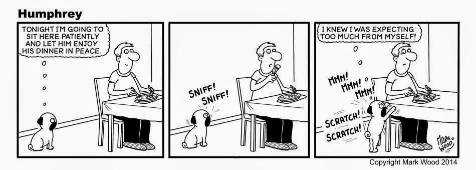 PUGaholics ♥: Humphrey Cartoon: Tirinhas Tudo a Ver com o