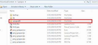 Save the synapse package content on your project folder