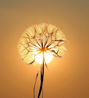 Güneşle ilgili sözler