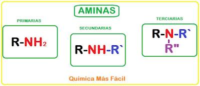 Esquema general de aminas primarias, secundarias y terciarias. Se observa la estructura química