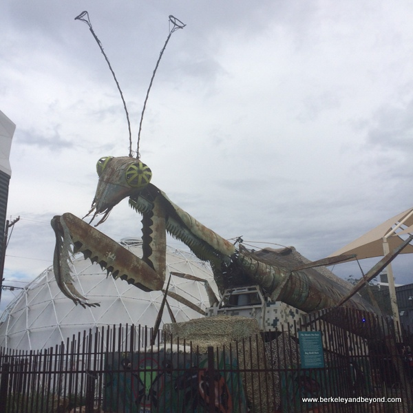 praying mantis at entrance to Downtown Container Park in Las Vegas, Nevada