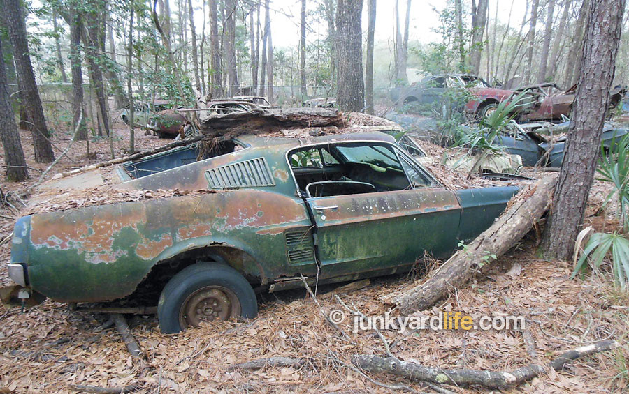 Junkyard Life Classic Cars Muscle Cars Barn Finds Hot Rods And Part News