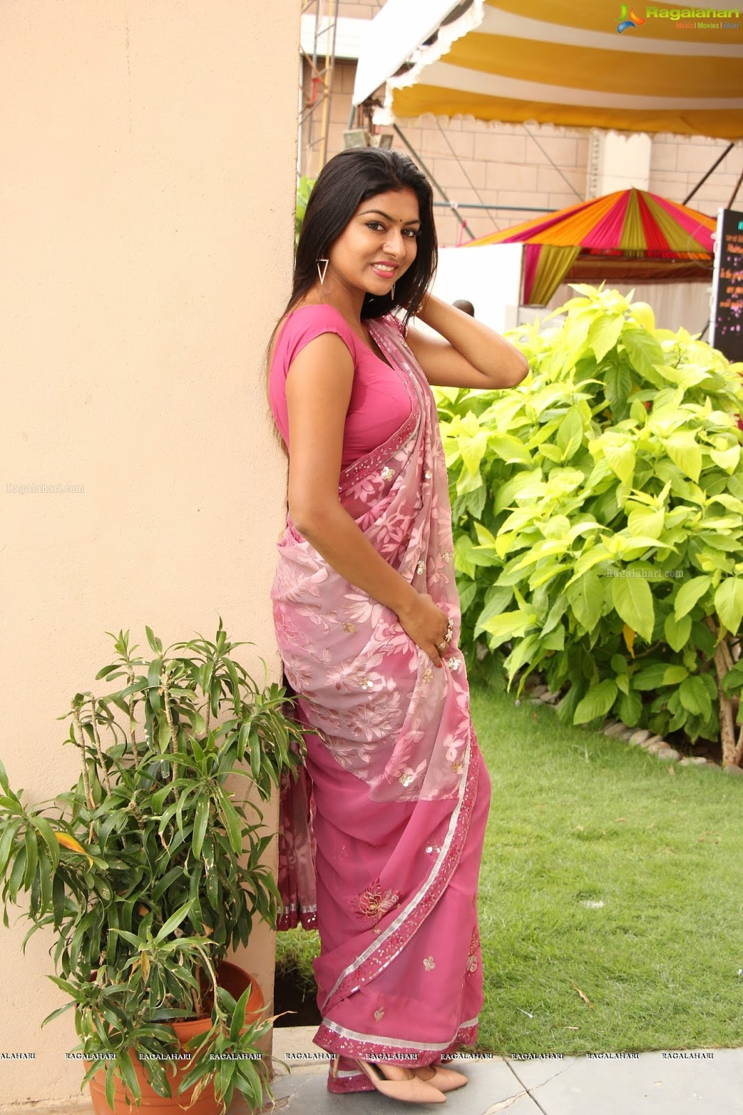actress celebrities photos sai akshatha hot saree stills actress sai