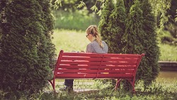 Girl Reads a Book in the Park