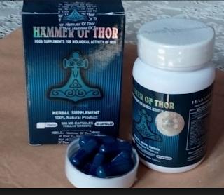 khasiat obat hammer of thor
