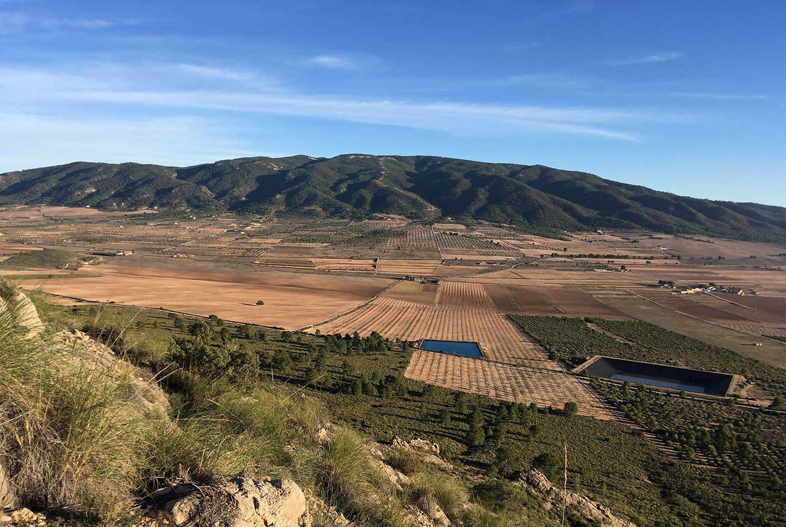 Sierra de Salinas desde el Serral. Yecla, diciembre, 2018