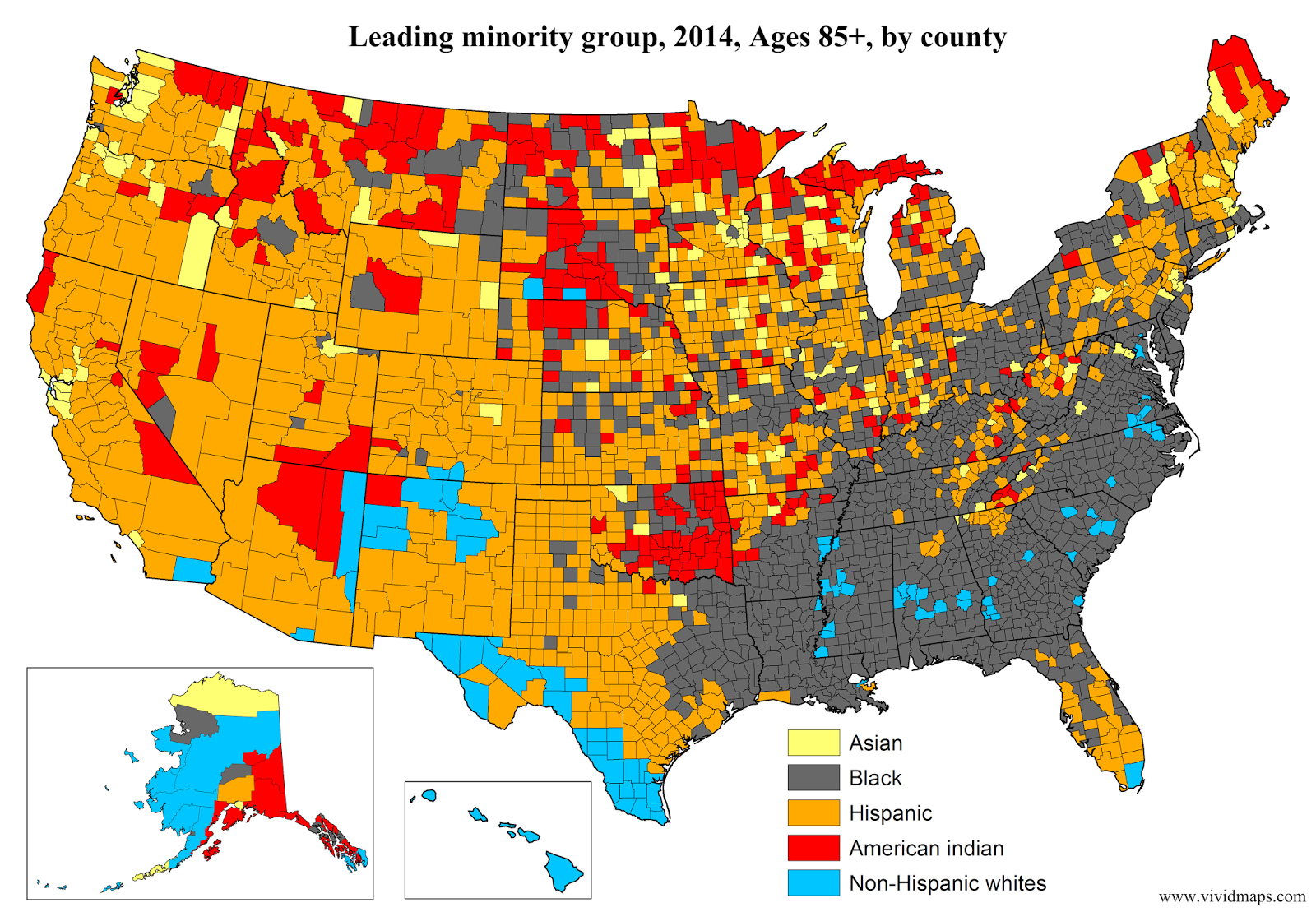 Leading minority group, Ages 85+, by county