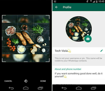 how to change whatsapp profile picture size