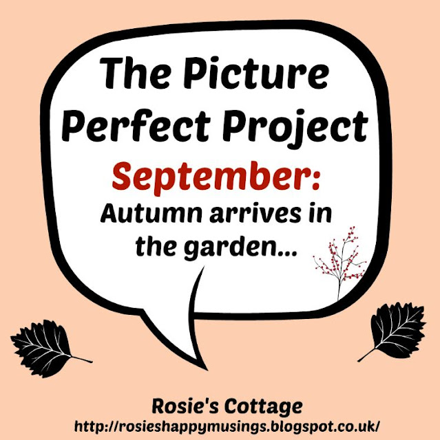 Picture Perfect Project September