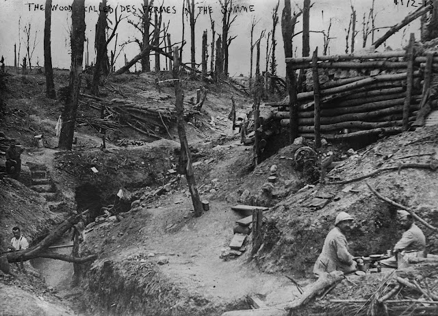the history of the battle of somme The battle of the somme was a definitive campaign of the first world war unprecedented casualties resulted from intense trench.