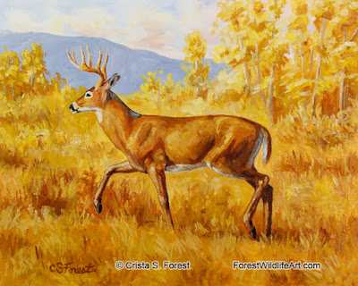 http://pixels.com/featured/whitetail-deer-in-aspen-woods-crista-forest.html