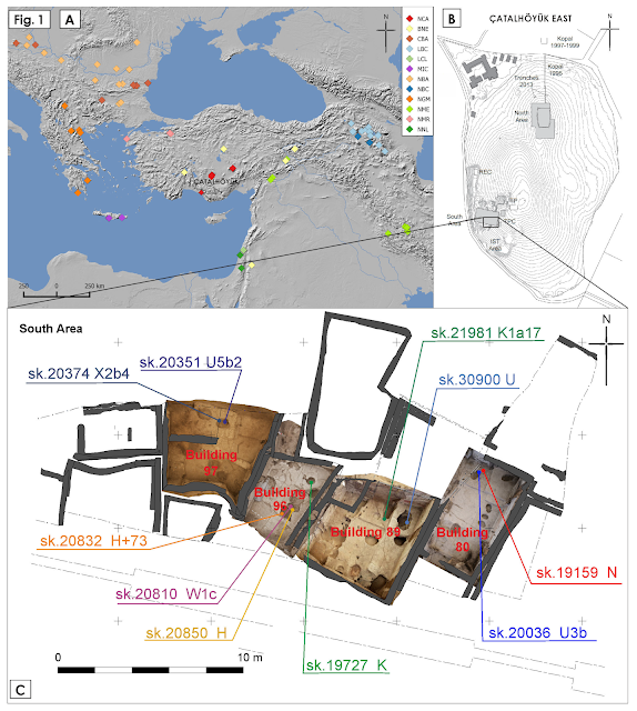 Genetic studies sheds light on social structure of Catalhoyuk inhabitants