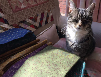 Suzi the cat helping out with the Dear Jane Quilt