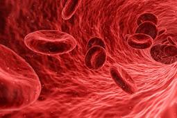 6 Bahan Alami yang Dapat Meningkatkan Kadar Trombosit Penderita DBD