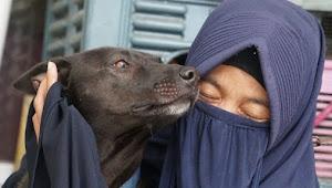 Muslim Pelihara Anjing, Begini Cara Bersuci dari Air Liur Anjing