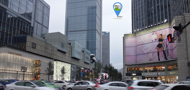 Panda tries to invade a shopping mall in Chengdu downtown