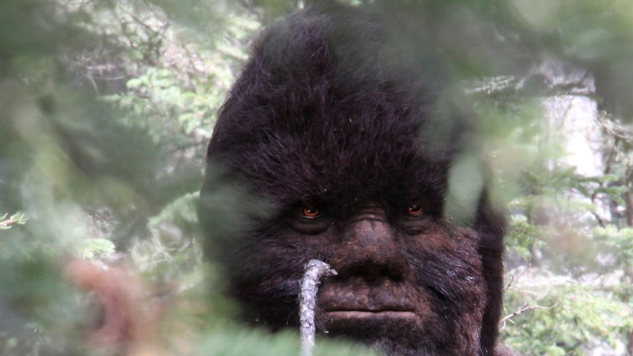 A Brief History Of Bigfoot