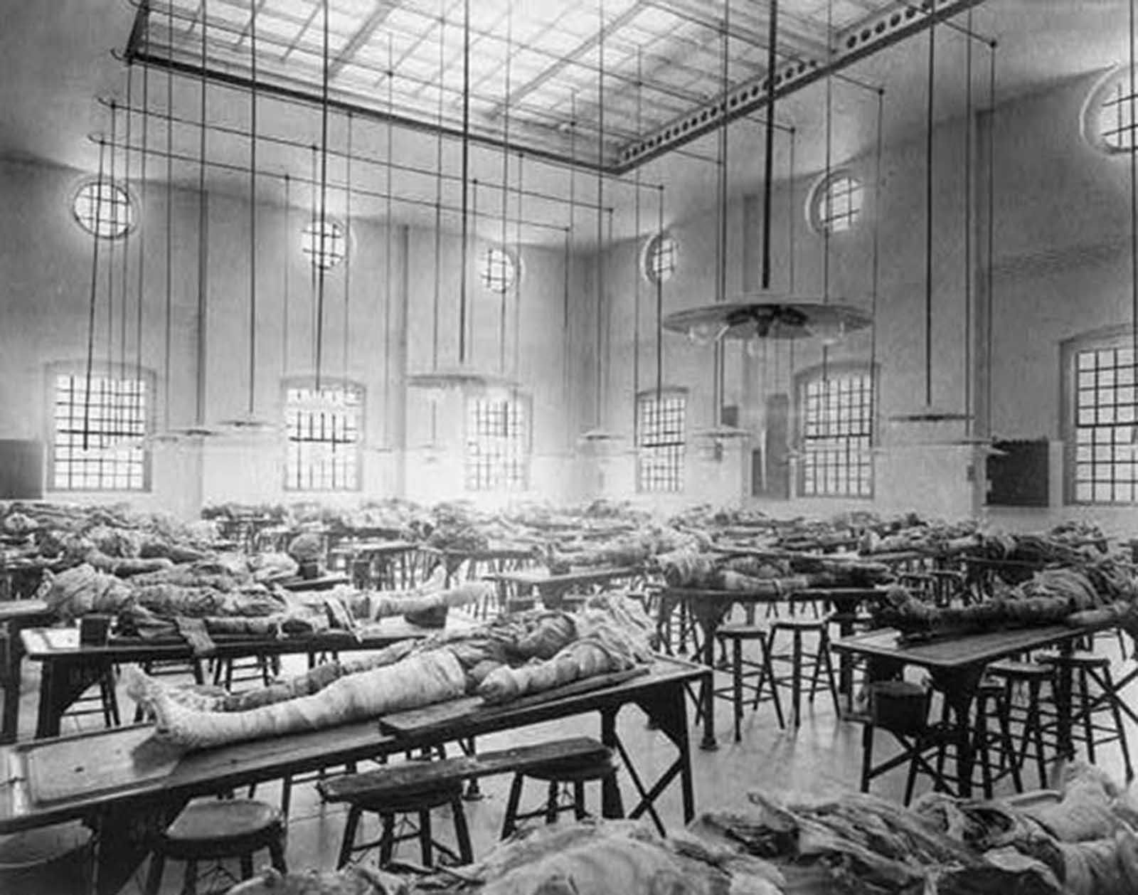 Cadáveres parcialmente diseccionados en mesas en la sala de disección del Jefferson Medical College en Filadelfia, Pensilvania, alrededor de 1902.