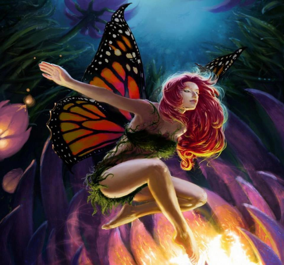 Pinterest Wallpapers Fall Mariposas Fantas 237 A Vol 5 20 Fotos Imagenes Y Carteles
