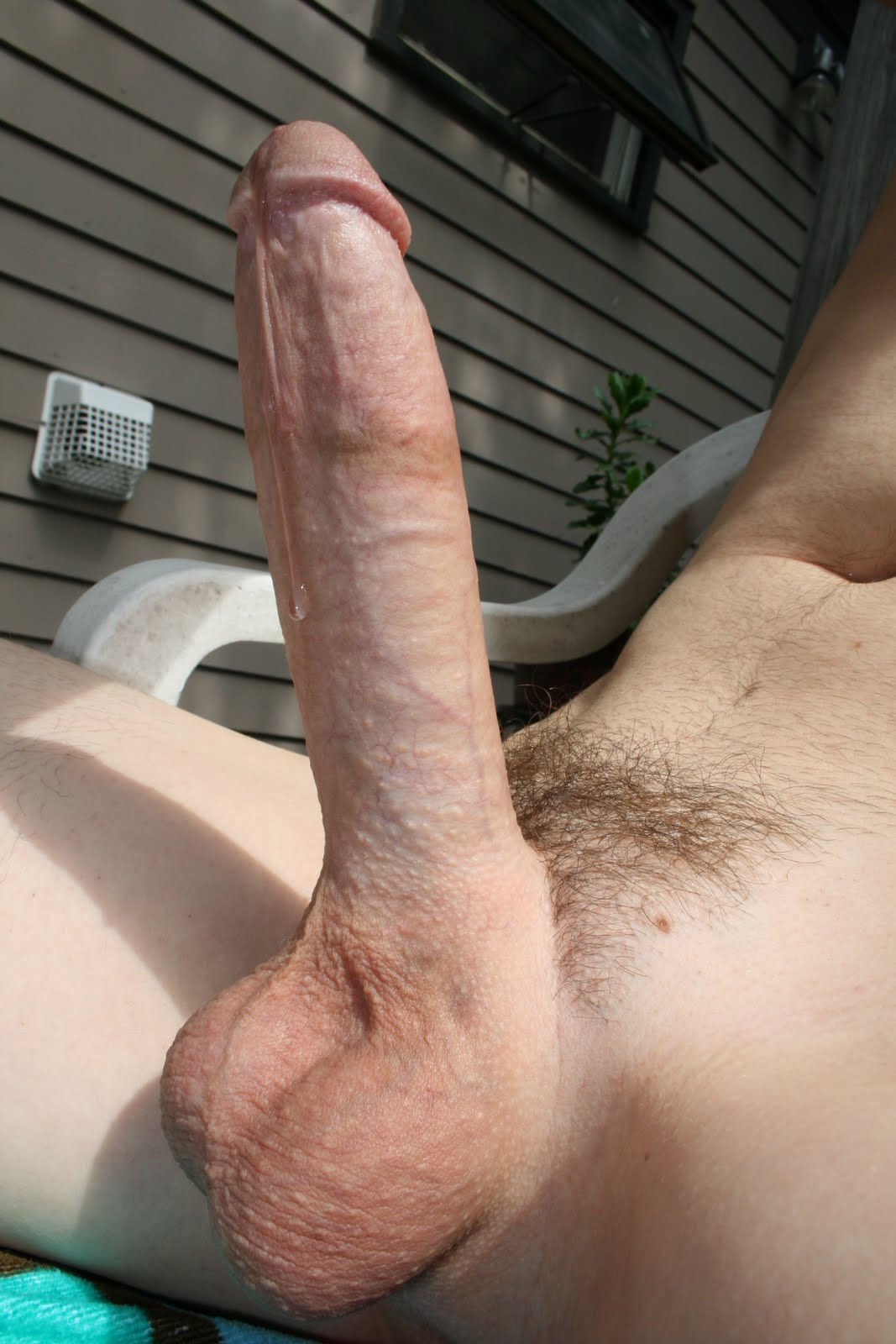 Giant dick