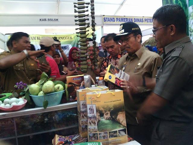 Padang Pariaman Borong Trophy Livestock Expo Contest, di Pasaman Barat