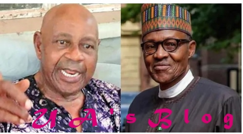 Don't believe your people saying nobody can defeat you - Tam David-West sends message to Buhari