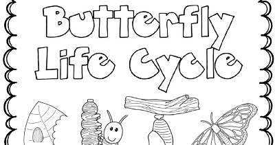 The Paper Maid: Butterfly Life Cycle