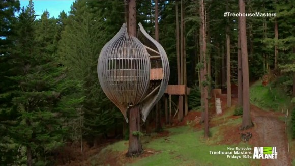 Treehouse Masters Daily Tv Shows For You