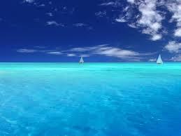 jenis-jenis laut