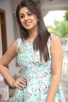 Nikki Galrani at Prema leela pelli gola trailer Launch ~  Exclusive 081.JPG