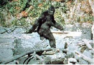 Misteri tentang makhluk yeti dan bigfoot