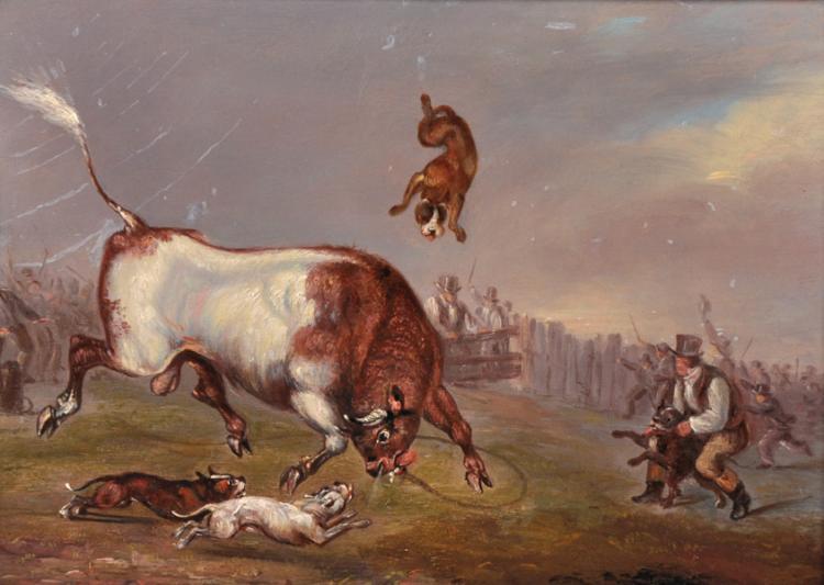 Stamford Bull-Running