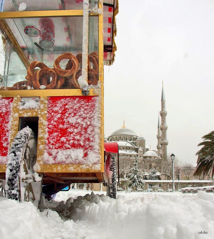 Doğal İstanbul Resimleri