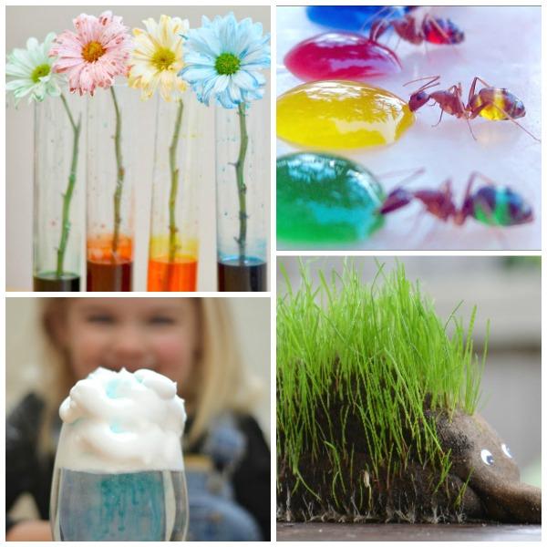 SPRING SCIENCE FOR KIDS- 30 FUN ACTIVITIES! #scienceexperimentskids #sciencefairprojects #springscienceactivities  #springscienceexperimentsforkids #sciencefairprojectselementary #scienceforkids #scienceexperiments  #springactivitiesforkids #springcraftsforkids #springactivities #springcrafts #activitiesforkids #craftsforkids #kidsactivities