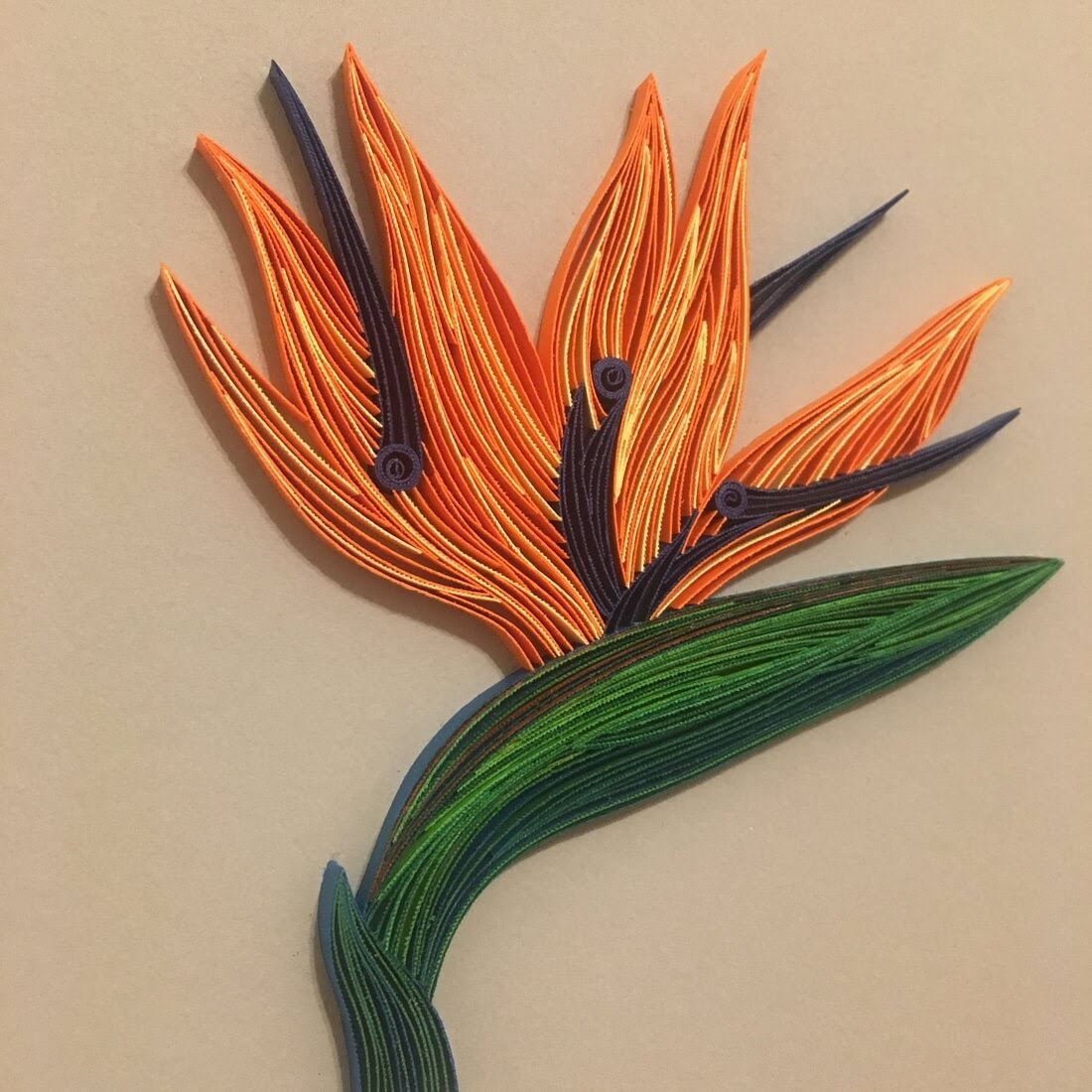 15-Bird-of-Paradise-Flower-Tatiana-People-and-Animal-Portraits-plus-Flower-Quilling-www-designstack-co