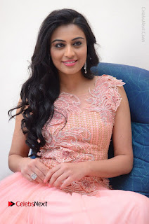 Actress Neha Hinge Stills in Pink Long Dress at Srivalli Teaser Launch  0121.JPG