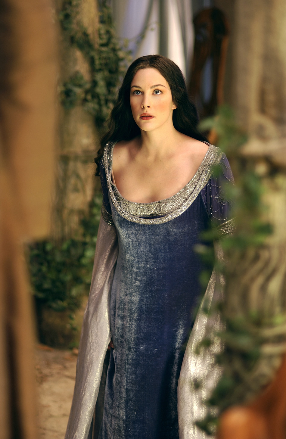 Am I cute or what?: *Review* Lord of the Rings  Arwen\'s Blue Dress ...