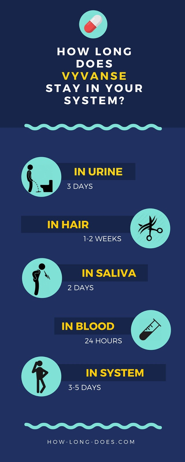How long does Vyvanse stay in your system infographic