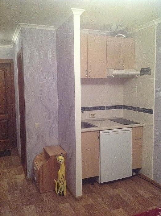 Фото коттеджа с кухней